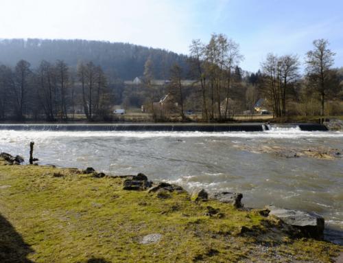 Angelurlaub in Thüringen – Gewässer und Fische